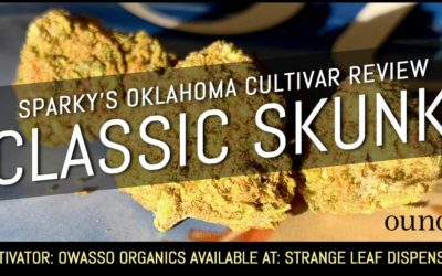 Classic Skunk – Sparky's Oklahoma Cultivar Review