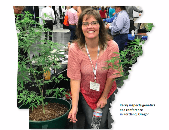 Becoming a Cannabis Nurse in Arkansas