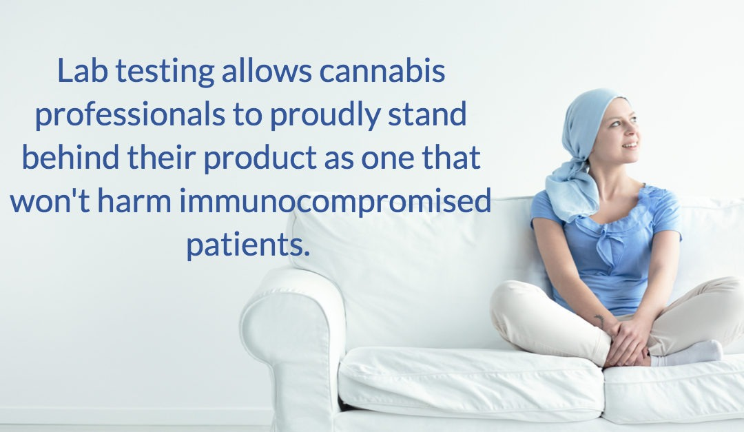 A NURSES PERSPECTIVE: Cannabis and The Immunocompromised Patient