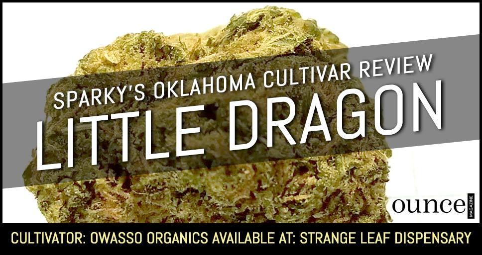 Little Dragon – Sparky's Oklahoma Cultivar Review (SEE PHOTOS)
