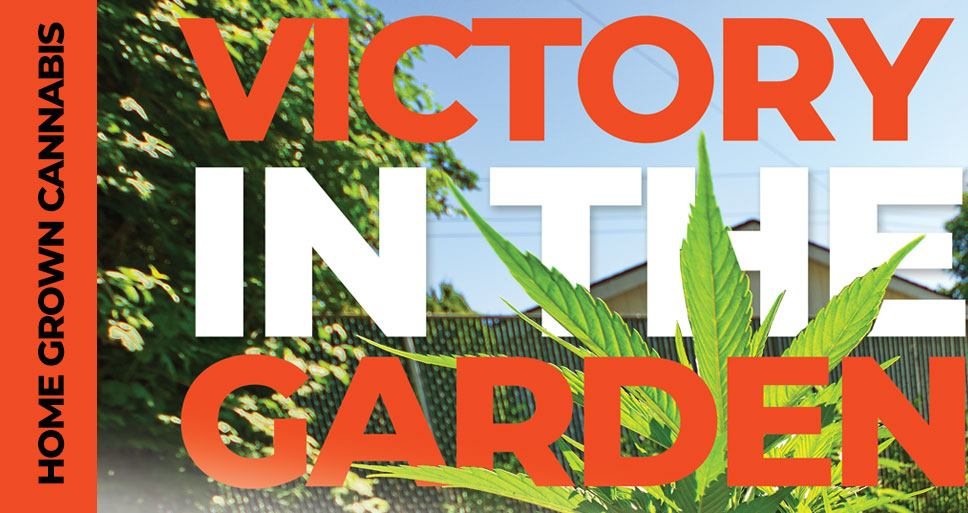 Home Grown Cannabis: Victory in the Garden